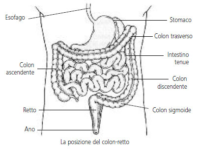 colon-retto